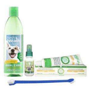 Dog Dental Health Kit